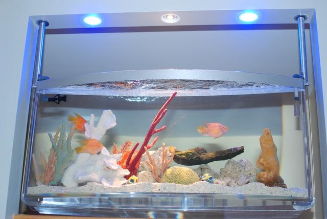 Aqua sculpture aquatic design has 20 reviews and average for Spacearium aquariums